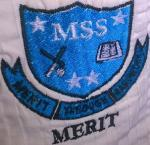 MERIT GROUP OF SCHOOLS (Secondary) - Secondary